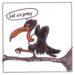 Vulture culure
